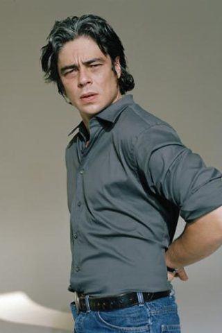 Benicio Del Toro Height - Weight