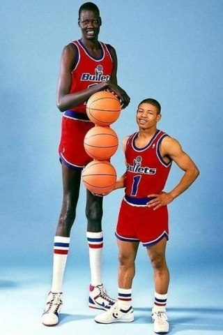 Manute Bol height and weight